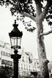 Parisian Lightposts BW II Photographic Print by Erin Berzel