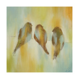 Bird Trio I Giclee Print by Jeni Lee