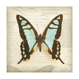 Vintage Butterfly I Giclee Print by Amy Melious