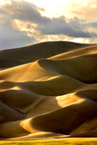 Great Sand Dunes III Photographic Print by Douglas Taylor