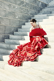 Flamenco VI Photographic Print by Eugenia Kyriakopoulou