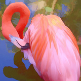 Large Flamingo Photographie par Linda Mann