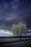 Dark Sky Reproduction photographique par Ricardo Demurez