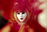 Harlequin's Mask Photographic Print by Ursula Kuprat