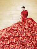 Flamenco VIII Photographic Print by Eugenia Kyriakopoulou