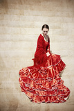 Flamenco IV Photographic Print by Eugenia Kyriakopoulou