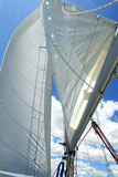 Mainsail and Jib Photographic Print by Stephen Bitel
