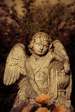 Sculpture of Angel 3 Photographic Print by Ricardo Demurez