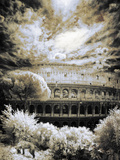 Coliseum with Dog, Rome Photographic Print by Dolores Smart