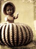 Doll Photographic Print by Ricardo Demurez