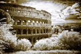 Coliseum with Sea Gull Photographic Print by Dolores Smart