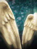 Sculpture's Wings Photographic Print by Ricardo Demurez