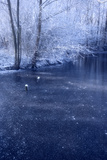 Winter Landscape 2 Photographic Print by Svetlana Sewell