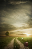 Wandering Road Photographic Print by Daniela Owergoor