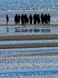 Meeting on the Beach Photographic Print by Ursula Kuprat