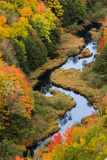 Fall in Carp River Photographic Print by Levent ERYILMAZ