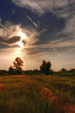 Autumnal Landscape 1 Photographic Print by Svetlana Sewell