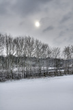 Winter 1 Photographic Print by Stuart Brill
