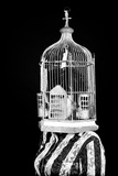 Woman with a Birdcage 1 Photographic Print by Max Hertlischka