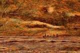 Autumnal Time Photographic Print by Ronaldo Pichardo