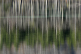 Reflection Photographic Print by Wolfgang Simlinger