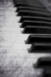 Piano Keys 1 Photographic Print by Svetlana Sewell