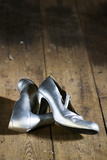 Silver Shoes 1 Photographic Print by Stuart Brill