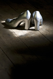 Silver Shoes 3 Photographic Print by Stuart Brill
