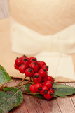 Red-Berry and Hat Photographic Print by Svetlana Sewell
