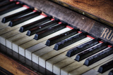 Piano Keys Photographic Print by Stuart Brill