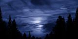 Moonlight 3 Photographic Print by Svetlana Sewell