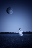 Woman in a White Dress 1 Photographic Print by Svetlana Sewell
