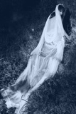 White Lady Photographic Print by Svetlana Sewell