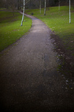 Path 2 Photographic Print by Svetlana Sewell