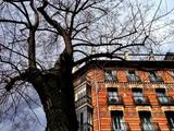 Tenement House Photographic Print by Ronaldo Pichardo