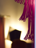 Purple Fringes Photographic Print by Max Hertlischka