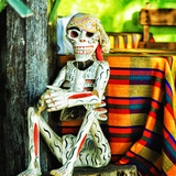 Skeleton at the Feast Photographic Print by Dolores Smart