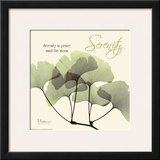 Serenity Ginko Prints by Albert Koetsier