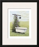 Bird Bath Prints by Kathleen Green