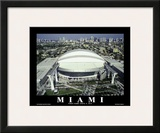 Miami Marlins Park Sports Print