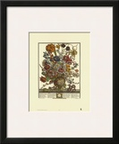 Twelve Months of Flowers, 1730, March Print by Robert Furber