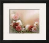Blooming Peonies Prints by T. C. Chiu