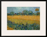 Field of Flowers near Arles Posters by Vincent van Gogh