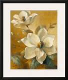 Magnolias Aglow at Sunset I Prints by Lanie Loreth
