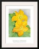 Squash Blossoms Prints by Georgia O'Keeffe
