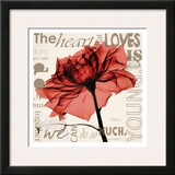 Red Rose Love Prints by Albert Koetsier