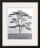 Teamwork Prints by Dennis Frates