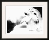 Impressions Framed Giclee Print by Suzanne Sturgill