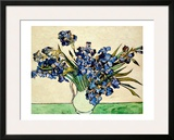 Vase of Irises, c.1890 Framed Giclee Print by Vincent van Gogh