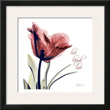 Single Tulip Live Laugh Prints by Albert Koetsier